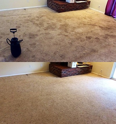 Residential Carpet Cleaning at North County Carpet Cleaning in Vancouver, WA