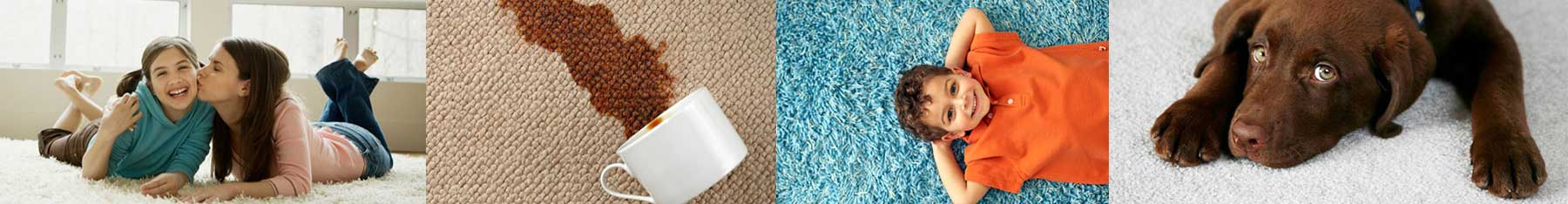 North County Carpet Cleaning and Upholstery Cleaning in Vancouver WA